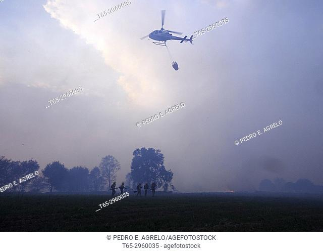 Uncontrolled wildfire near Lugo, a group of brigadistas, forest firefighters leave the helicopter where they traveled to work in the field and be able to fight...