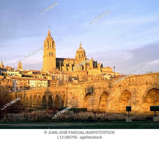 Roman bridge and Gothic cathedral. Salamanca. Spain