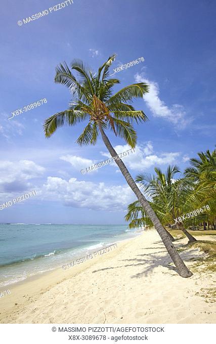 The beach in Le Morne Brabant, Mauritius