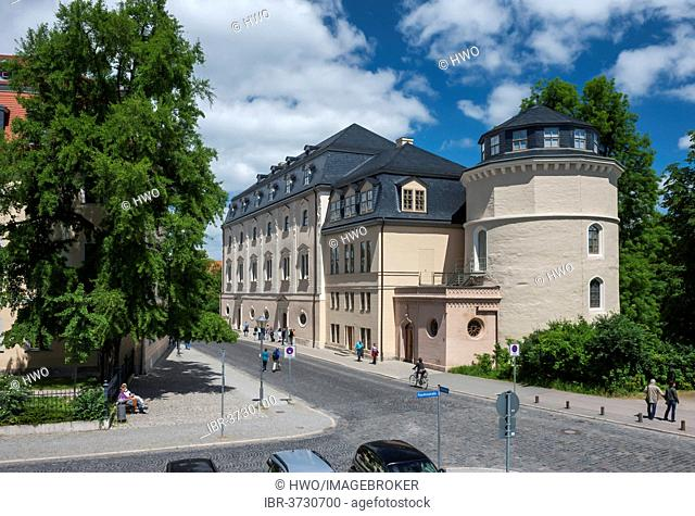 Duchess Anna Amalia Library with the books tower, left the Goethe Ginkgo tree, Weimar, Thuringia, Germany