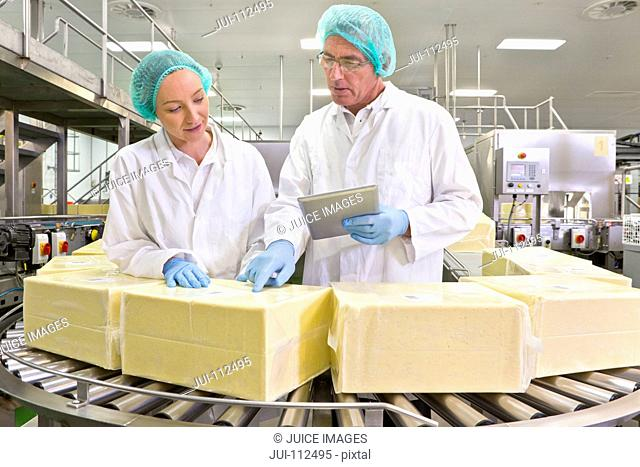 Quality control workers with digital tablet examining blocks of cheese at production line in processing plant
