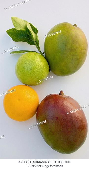 Mango, orange and lemon
