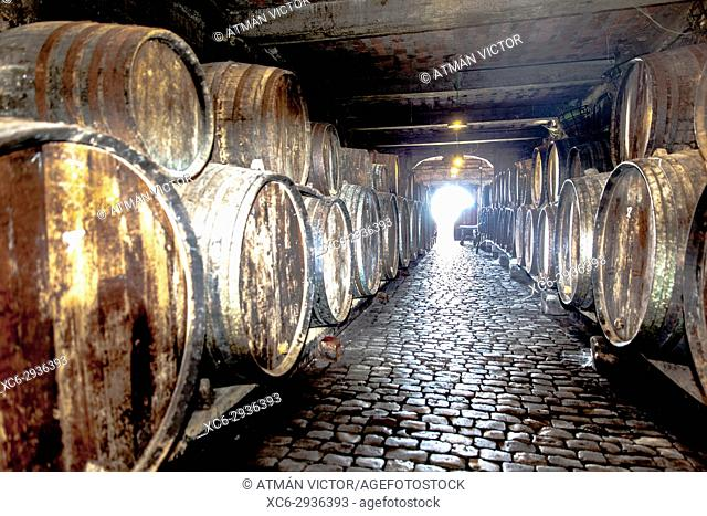 wooden barrels stacked in a wine cellar