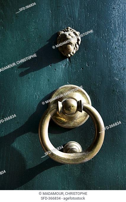 Brass door knocker and lion's head on wooden door