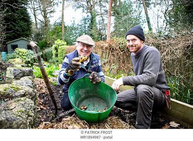 Two men harvesting potatoes, Bournemouth, County Dorset, UK, Europe