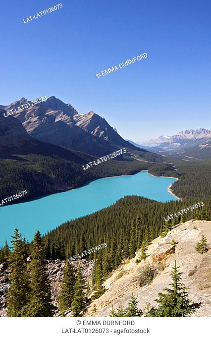 Peyto Lake is a glacier-fed lake in the Waputki range in Banff National Park in the Canadian Rockies. The vivid turquoise blue of the water colour is caused by...