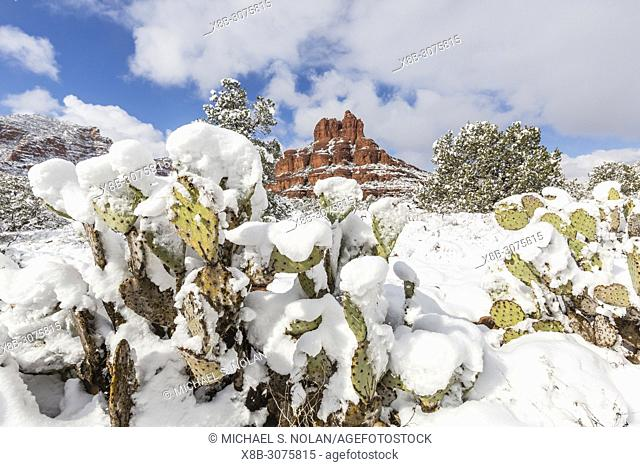 Bell Rock after a snow storm near Sedona, Arizona