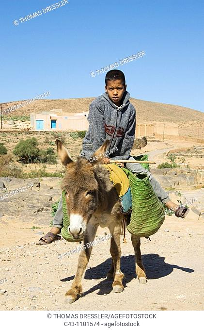 Morocco - Berber boy on a donkey in a village in the vicinity of the town of Guelmim in southwest Morocco