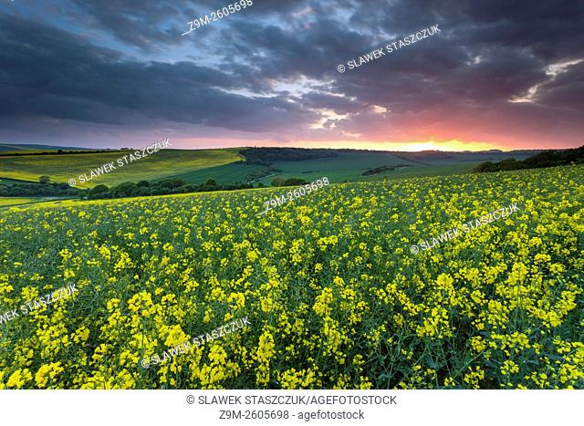 Spring sunset in South Downs National Park near Lewes, East Sussex, England
