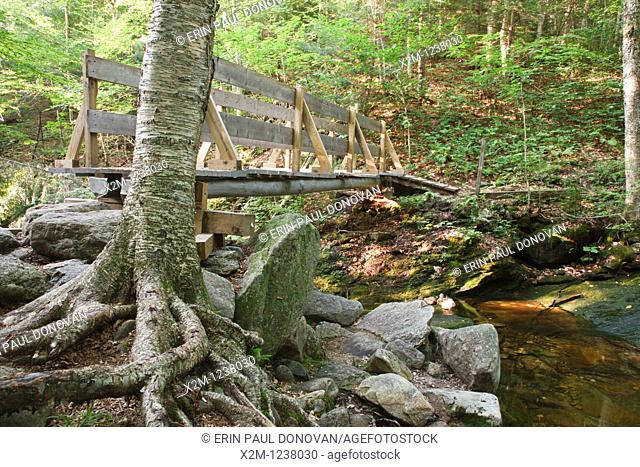 Footbridge along the Holt Trail which climbs to the summit of Cardigan Mountain in Orange , New Hampshire USA