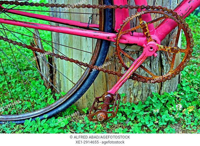 Bicycle painted in pink