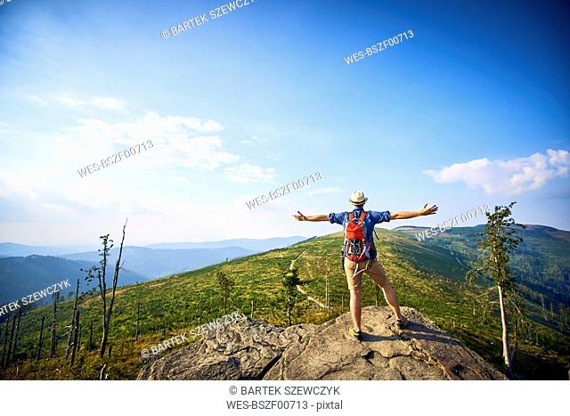 Rear view of hiker in mountains enjoying the view