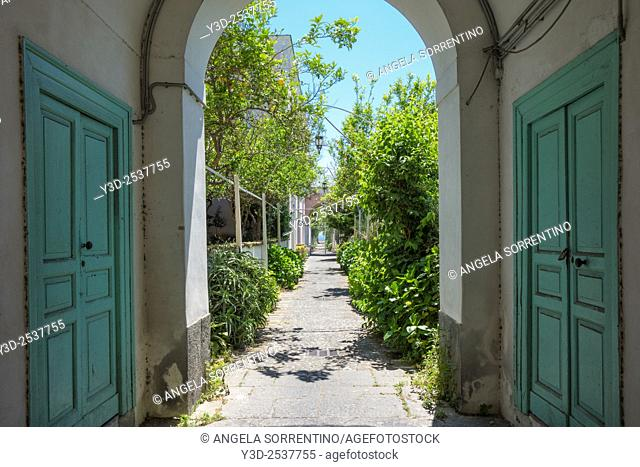 Beautiful residential building entrance, path in the garden with lemon trees