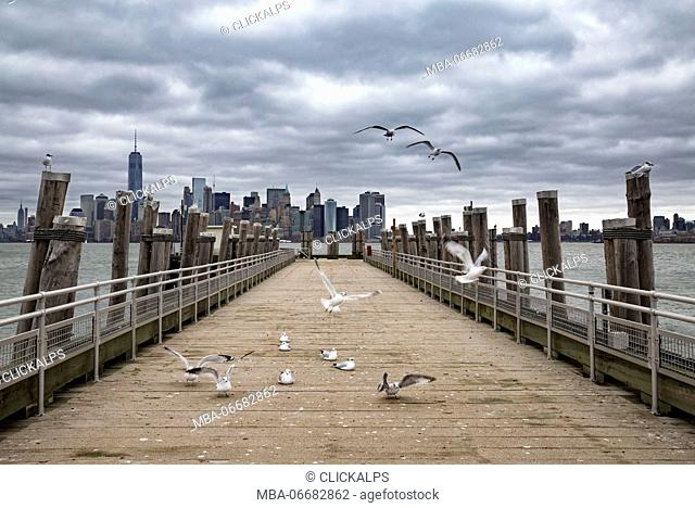 Lower Manhattan skyline (Liberty Island, New York City, New York, United States of America)