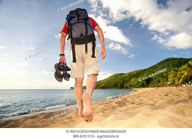 Man walking on the beach, barefooted, beach walking, Grande Anse, Guadeloupe, Lesser Antilles, Caribbean