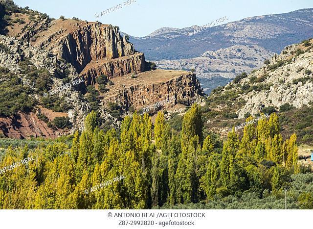 Microrreserva Estrecho del Hocino. Sierra de Alcaraz. Salobre. Albacete Province. Spain