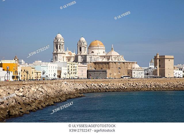 View of Cadiz, Andalucia, Spain, Europe