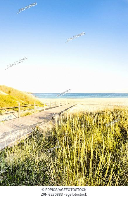 wooden footbridge leading to the beach, praia do matinhal, sagres, algarve, portugal