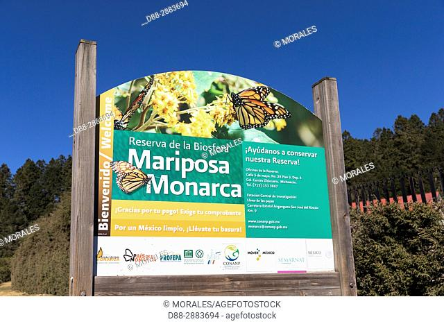Central America, Mexico, State of Michoacan, Angangueo, Reserve of the Biosfera Monarca Sierra Chincua, where the monarch butterflies (Danaus plexippus)