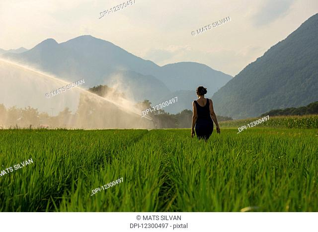 A woman walks through a lush green field with a sprinkler spraying; Ascona, Ticino, Switzerland