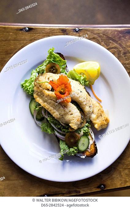 New Zealand, South Island, Otago, Moeraki, Fleur's Place, one of the most honored restaurants in NZ, fish sandwich