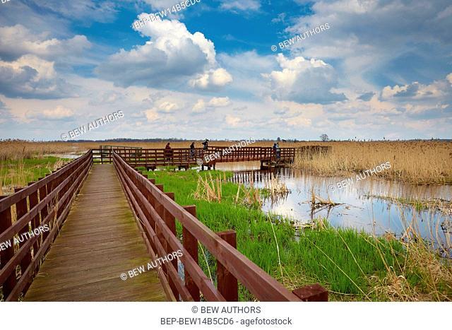 Poland, Podlaskie Province, Narew National Park. Sliwno-Wapniewo education track