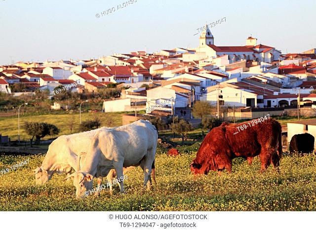 Typical village in Extremadura, Spain