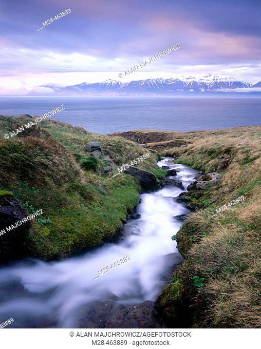 Stream flowing into Eyjafjördur. Iceland