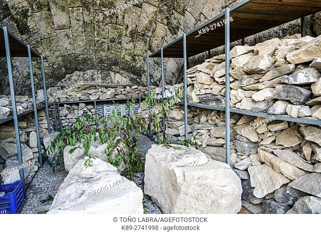 Perge remains storage. Old capital of Pamphylia Secunda. Ancient Greece. Asia Minor. Turkey