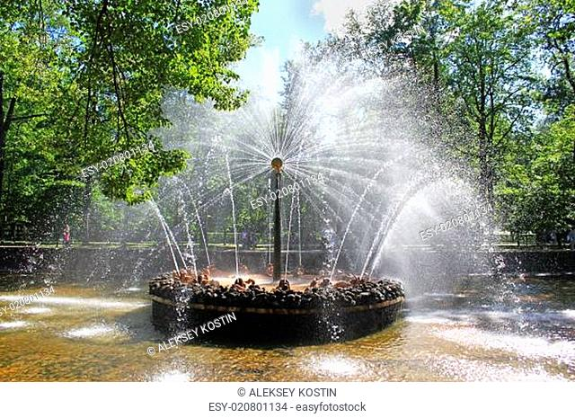 Fountain in Peterhof sun