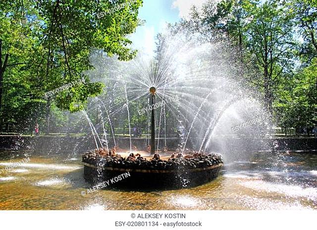 Fountain in Peterhof sun