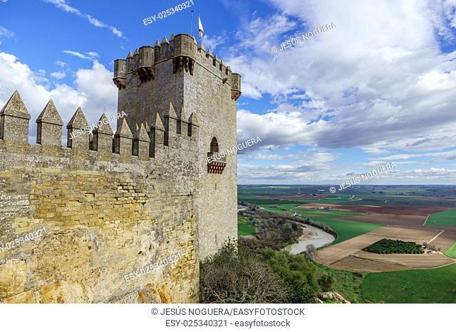 Castle Almodovar del Rio, Cordoba. Spain