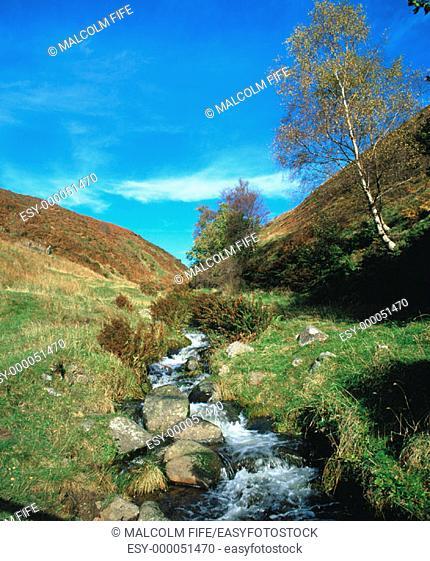 Stream. Ochil Hills, near Dollar. Clackmannshire. Scotland