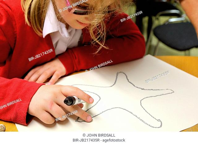 Girl touching shell drawing using xxxx raised technique Mysight Nottingham