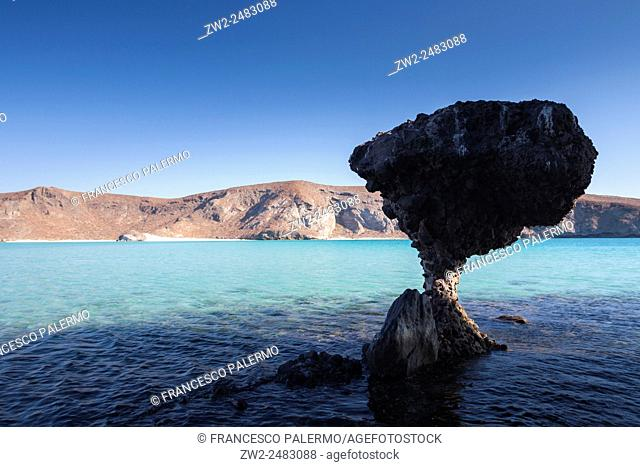 Mushroom of rock at sunset in balandra beach. La Paz, Baja California Sur. Mexico