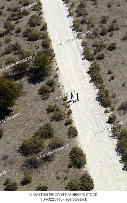 Two people walking down a gravel road leading to Maun, Botswana
