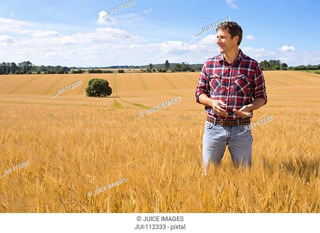 Farmer looking away in sunny rural barley crop field in summer