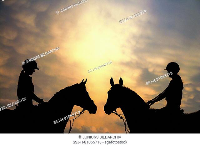 Dutch Warmblood. Two rider silhouetted against the evening sky. Netherlands