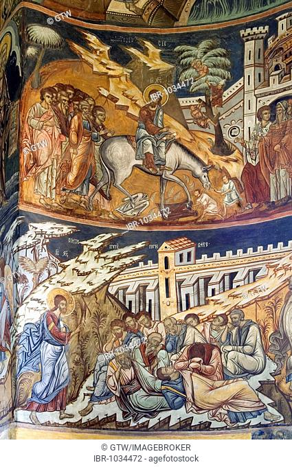 Naos of the Church of St Nicholas of the Probota Monastery, frescoes with biblical scenes and legends, UNESCO World Heritage Site, South Bucovina, Moldavia