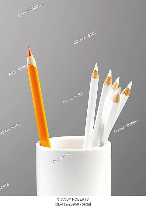 Orange pencil separated in cup with white pencils still life