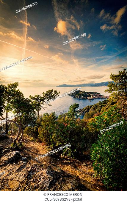 View from hill, Sestri Levante, Liguria, Italy