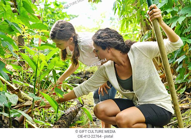 Woman and girl inspecting plants in garden