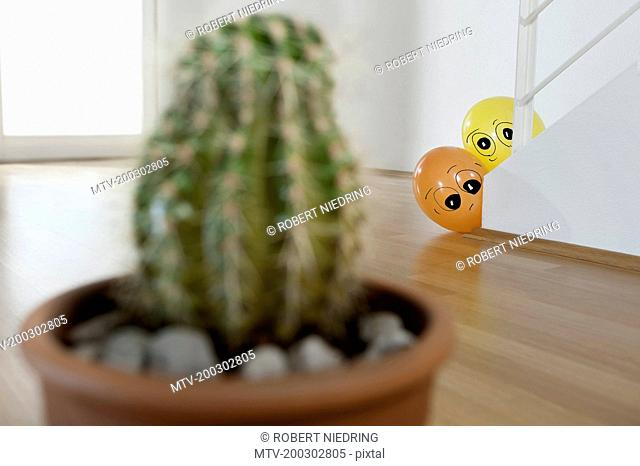 Two balloons peeking cactus, Bavaria, Germany