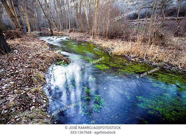 Dulce river in Pelegrina  Guadalajara  Castilla la Mancha  Spain