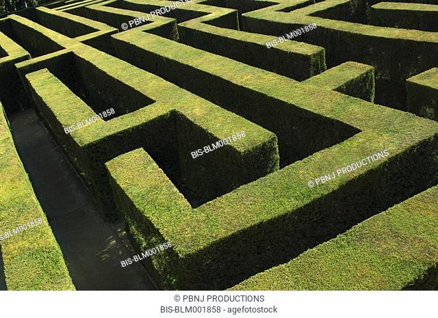 High angle view of labyrinth