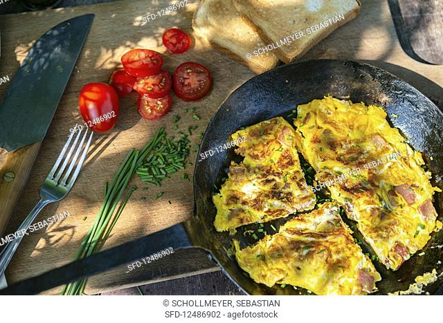 Scrambled eggs with tomatoes, chives and toast on a garden table