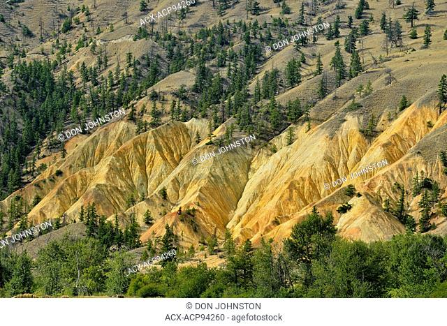 Badlands erosion features in the Thompson River Valley near 16 Mile, near Cache Creek, British Columbia, Canada