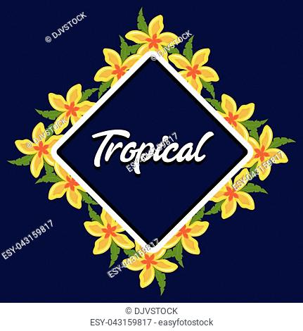 tropical flowers background summer vector illustration graphic design