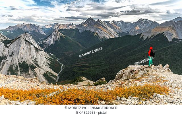 Female hiker to summit on Sulphur Skyline Trail, views over mountain landscape and river valley, summits with orange Sulphur deposits, panoramic views