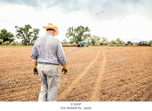 Rear view of male farmer walking across in ploughed field